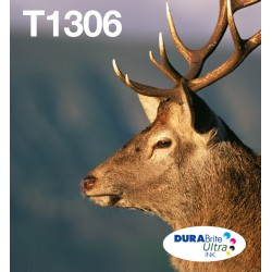 epson-stag-multipack-3-colours-t1306-durabrite-ultra-ink-easymail-1.jpg